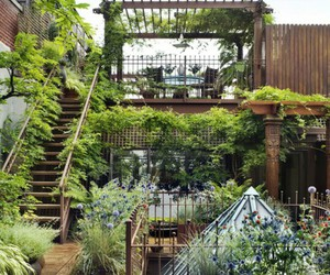 garden, plants, and green image