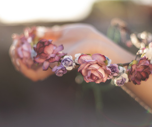 flowers, flower crown, and rose image