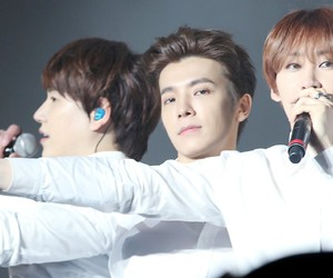 cutest, donghae, and eunhyuk image