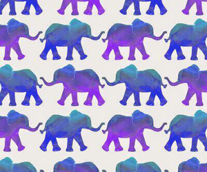 blue, wallpapers, and elephant image
