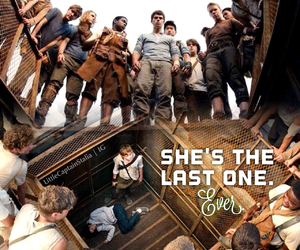 book, the maze runner, and tmr image