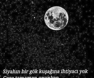 black and gece image