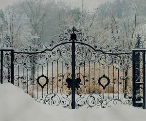 elegance, photography, and winter image