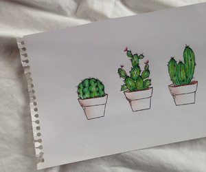 as, cactus, and draw image
