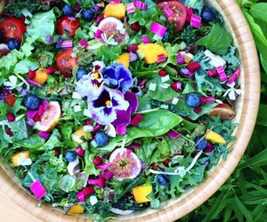 blueberries, healthy, and salad image