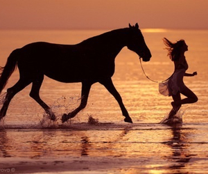 horse, girl, and beach image