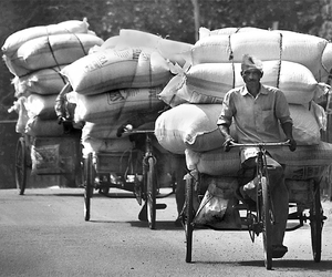 b&w, bicycle, and india image