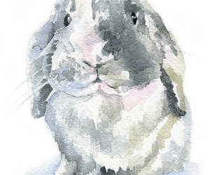 art, bunny, and nursery image