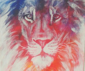 animal, lion, and colors image