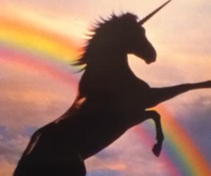 unicorn, rainbow, and magic image