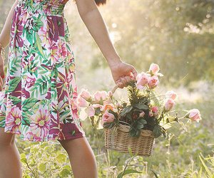 flowers, dress, and basket image