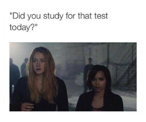 funny, test, and divergent image