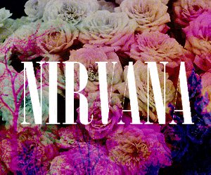 nirvana, music, and flowers image