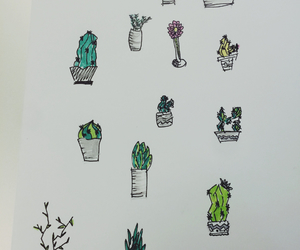 cactus, doodles, and draw image