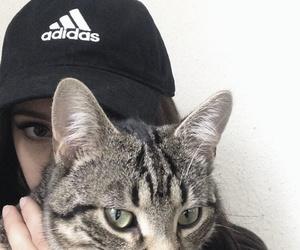 cat, adidas, and tumblr image