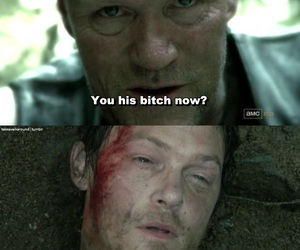 the walking dead, daryl dixon, and merle dixon image