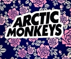 arctic monkeys, flowers, and music image