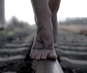 tattoo, bird, and feet image