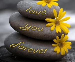 love, forever, and stone image