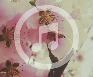 flowers, music, and cute image