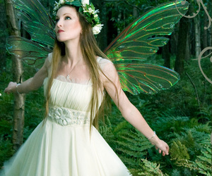 fairy, magic, and forest image