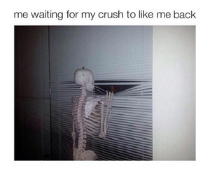 funny, love, and crush image