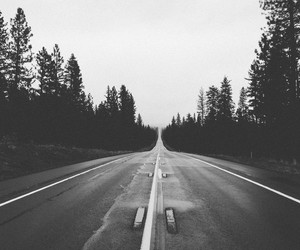 road, black and white, and trees image