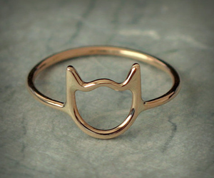 cat, kitty, and rings image