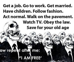 freedom and thruth image
