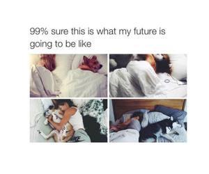 dog, future, and funny image