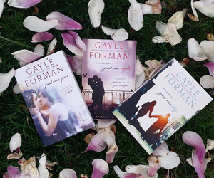 books and gayle forman image