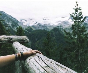forest, mountains, and nature image