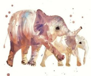 colorful, elephant, and happiness image