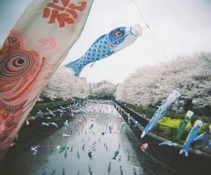 japan and koinobori image