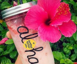 Aloha, drink, and flowers image
