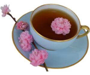 flowers, food, and teacup image