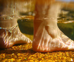 water, feet, and summer image