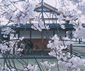home, japan, and nature image