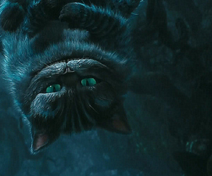 wallpaper, cat, and Cheshire cat image