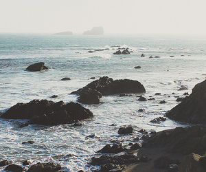 nature, sea, and hipster image