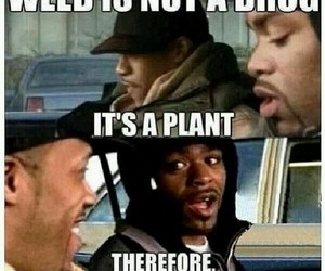 funny, weed, and lol image