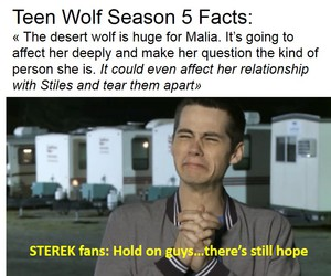 teen wolf, sterek, and sterek all the way image