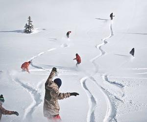 free, wild, and snow image