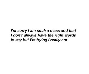 mess, quote, and words image