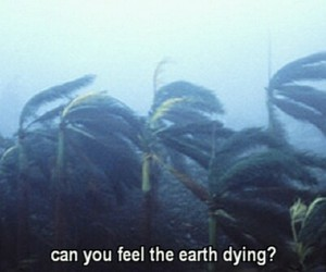 earth, dying, and grunge image