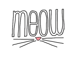 cat, meow, and kitten image