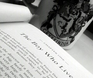 books, harry potter, and quidditch image