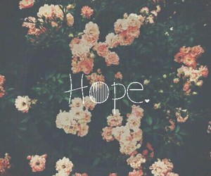 floral, hope, and flowers image