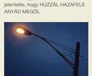 magyar, true, and hungary image