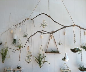 plants, white, and hipster image